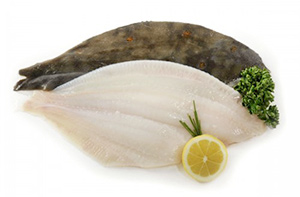 Plaice Whole/Fillets